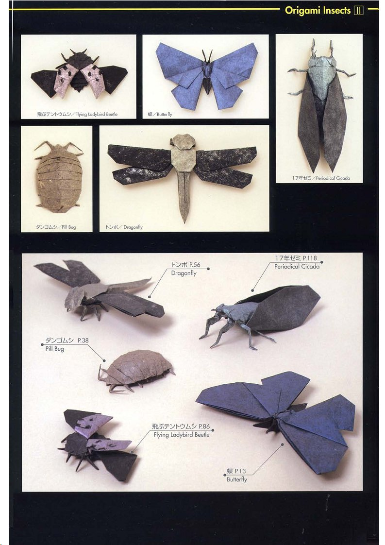 The origami book: robert j. Lang origami insects and their kin.