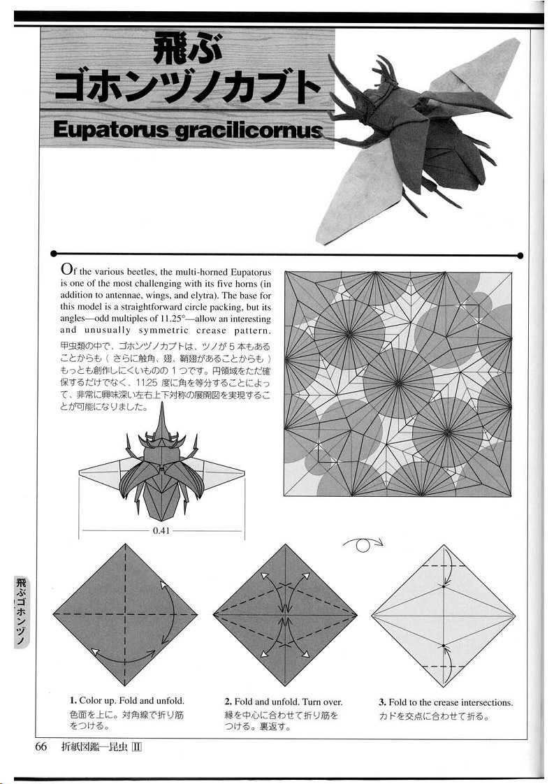 Origami Insect Diagrams Diy Enthusiasts Wiring Advanced Fox Instructions Diagram Gif Insects Book Rh Art Us Pdf