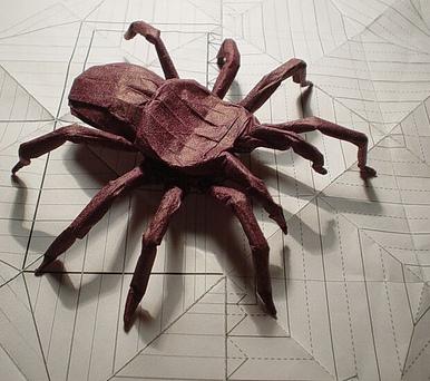 Tarantula By Robert Lang